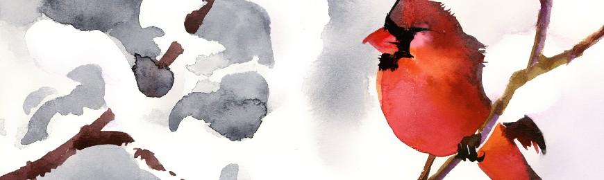 Bird Art by Wall Art Prints