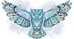 Wall Art Prints - Bird Art