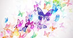 Wall Art Prints - Butterfly Art