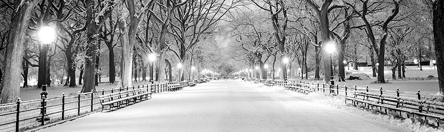 Completely new Winter Pictures | Wall Art Prints ZJ92